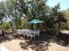 Déjeuner sur l'aire à l'ombre du chêne
